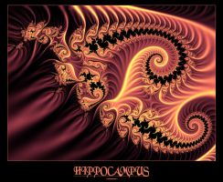 Hippocampus by greenarmani