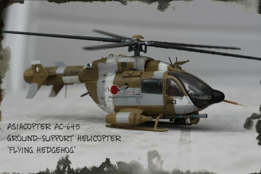 AsiaCopter by Brandzai