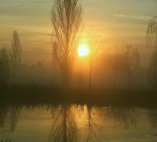 Sun in the morning by Louis-photos