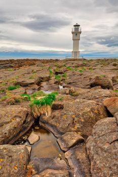 Rugged Akranes Coast by somadjinn