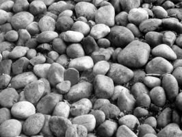 Pebbles - Black and White by admin2gd1