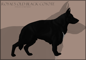 Royal's Old Black Coyote by RoyalFront