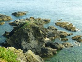 Lizard Point: View 31 by yaschaeffer