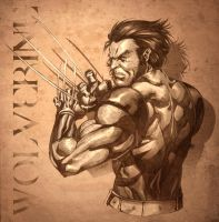 wolverine sketch... by DXSinfinite