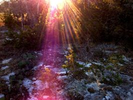 Rays Of Sunlight by TheGerm84
