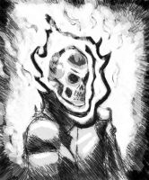 The Ghost Rider by Moebocop