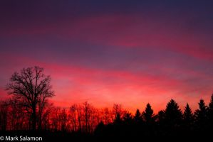 Reds of Dusk-8306 by renman1605