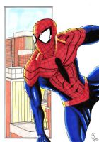 Spider-Man Redisigned by Shaun2186