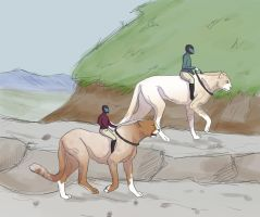 Avi and Mila - A rocky trail by Rhith