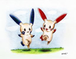 Minun and Plusle by MusicMew