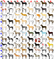 80 Adopts OPEN by angry-horse-for-life