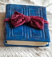 River Song's Journal by esther-rose-mouse