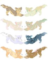 Point adoptables(closed) by LiaBorderCollie