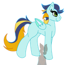 Soarin X Lightning Dust Shipping Foal by IceDragonQueen22