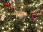In The Christmas Tree. by Weapons-Expert-Cool