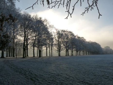 Winter in Leicester IX by whiskyboy