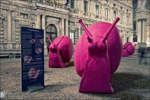 The night of pink snails by LoganX78