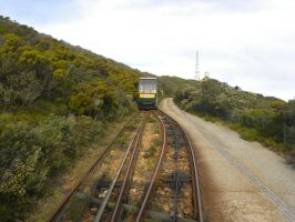 Tram to Cape Point Lighthouse by RiverKpocc