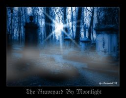 The Graveyard By Moonlight by Saturiell