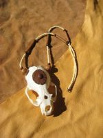 Otter skull necklace by lupagreenwolf