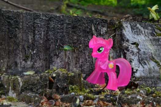 Stumped Pink by murknl