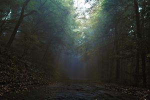 creepy road ahead by donnosch