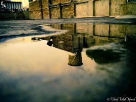 The Puddle Perspective by devilmaycryub