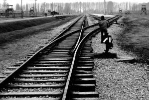 Auschwitz-Birkenau Rails 12 by TonyPringle