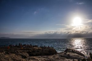 Gathered for the spectacle of nature by r-assumpcao