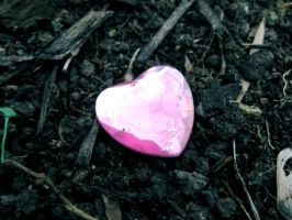 The Heart Beneath the Soil by Solitude12