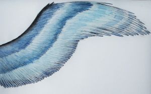 Blue wing by The-fox-of-wonders