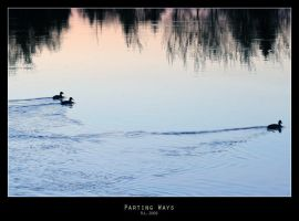Parting Ways by Mr808