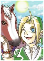 Link and Epona by bechan