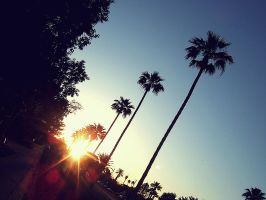 Tempe Sunset by hell0z0mbie