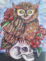 Owl and Skull by ElizaDrew