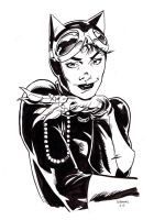 Catwoman by stokesbook