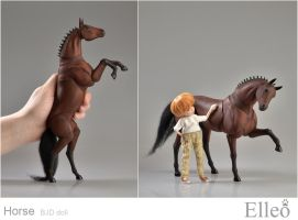 Horse bjd doll 12 by leo3dmodels