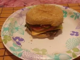 Simple single cheeseburger (mom's burger) by adamnorde583