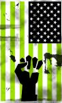 American Idiot Flag by PerduSeul