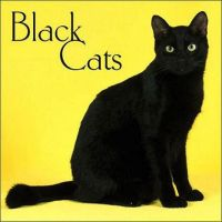 Black Cats ID by Black-Cats