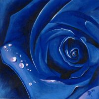 Blue Rose by DanielleHope