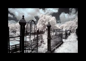 cemetary2 - infrared by rare-twinkie