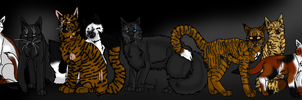Cats of The Clans by Malamutts