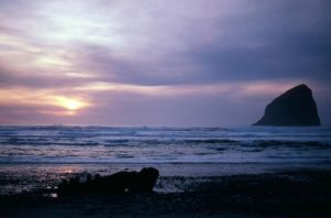 Oregon Coast by DocMallard