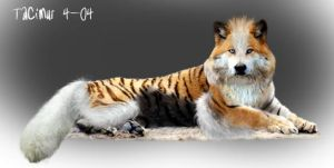 Arcanine realism by Tacimur