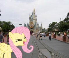 Fluttershy at Disney World by Dragonrider1227