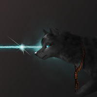 through the wolfs eyes by nevaeh-lee