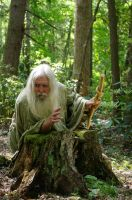 Pisqah Green Wizard 2011-05-24 67 by skydancer-stock