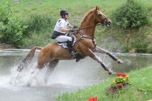3DE Cross Country Water Obstacle Series XV/4 by LuDa-Stock