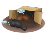 Cat's Box by Invader-Michaela